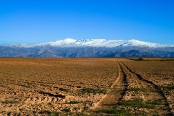 Sierra_Nevada_1